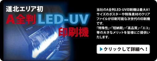 led1612.jpg