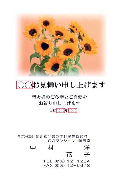 sc012.jpg
