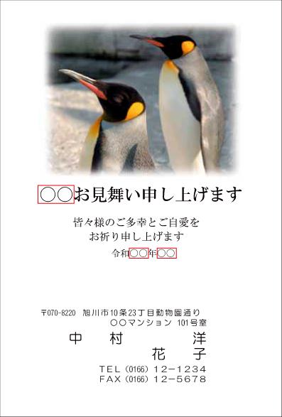 sc018.jpg